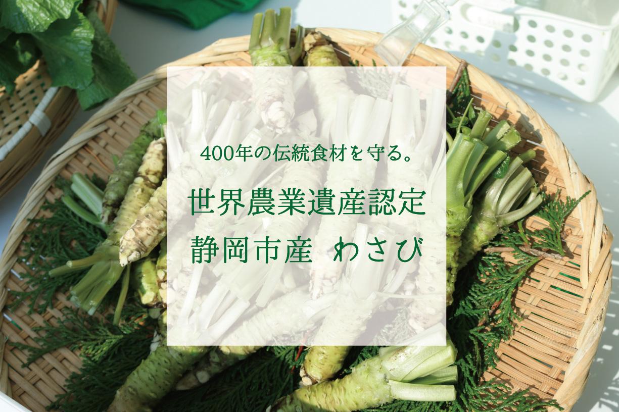 400年の伝統食材を守る。世界農業遺産認定静岡市産 わさび